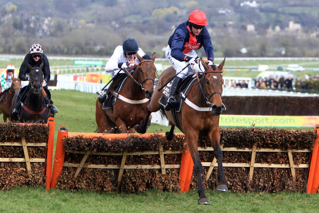Cheltenham Betting News: Sean Graham report some money for Bobs Worth for the Gold Cup and he is as low as 3/1 with the local firm