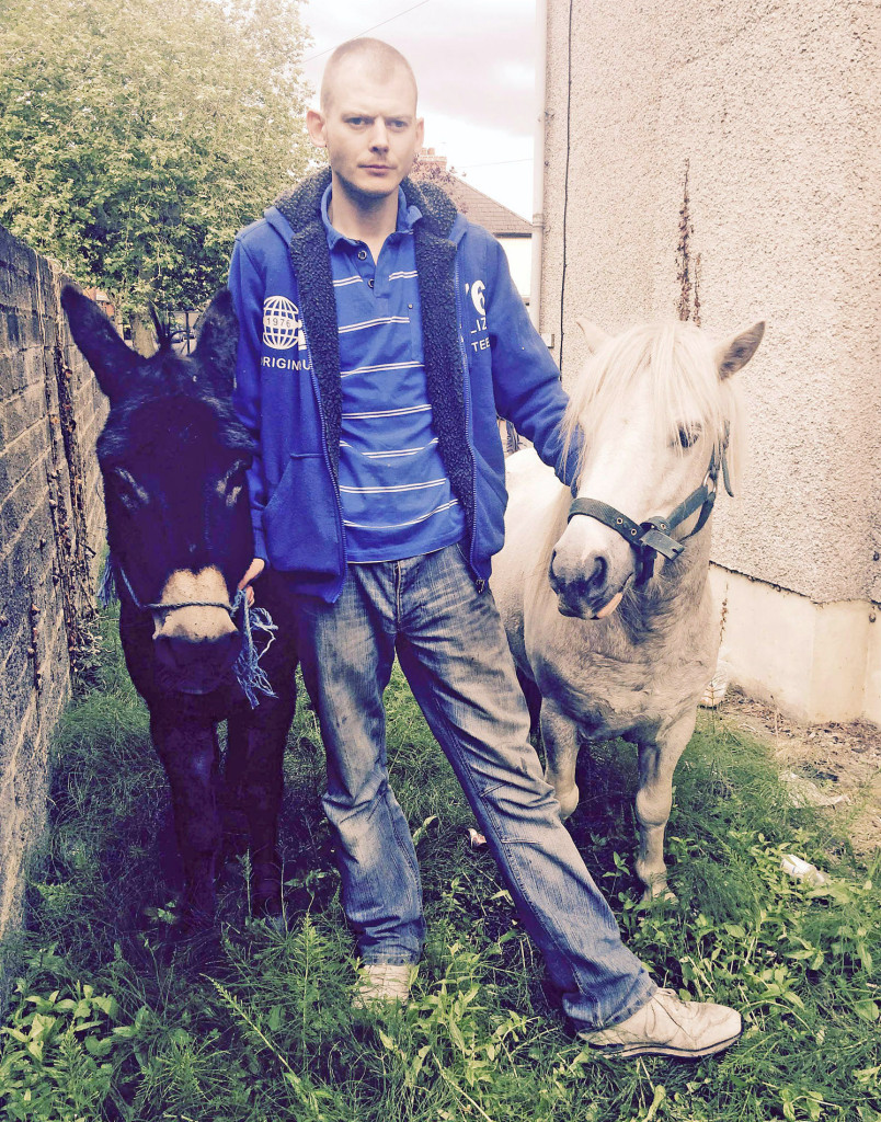Damien Madden with Spud and Donnie, who are being temporarily kept on a plot of land at Alliance Avenue