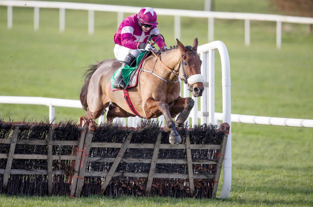 BIG RACE:  Death Duty is 1/2 to win the Lawlors Hotel Hurdle at Naas on Sunday to make it four wins on the bounce, but keep an eye out for Turcagua who looks value at 3/1 for the Mullins yard
