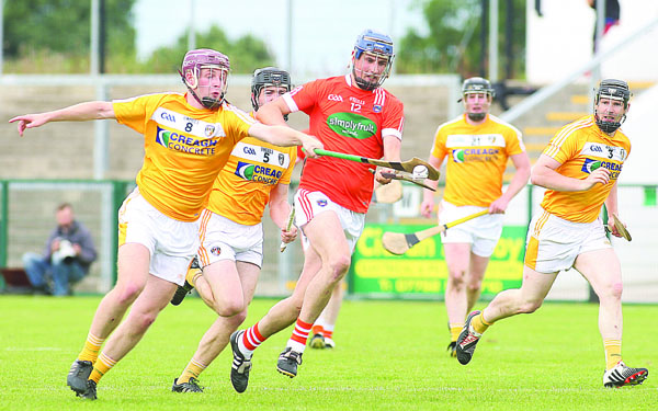 Antrim defeated Armagh in last year's Ulster final and in a recent league clash