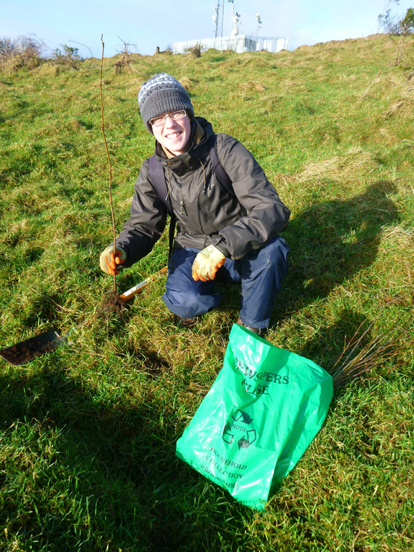 Belfast Hills are seeking volunteers for tree and hedge planting