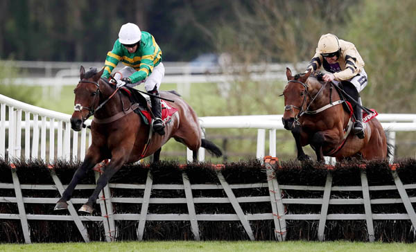 HARRYS GAME: Our each-way bet in the Stayers Hurdle is 2016 winner Uknowhatimeanharry who is around 9/1 with Sean Graham Bookmakers