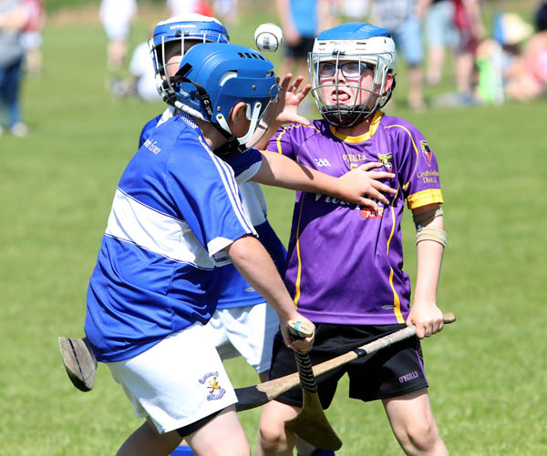 Oliver White (Carryduff) keeps his eye on the ball during the Pat Sheehan U10 Memorial Hurling Tournament at Milltown