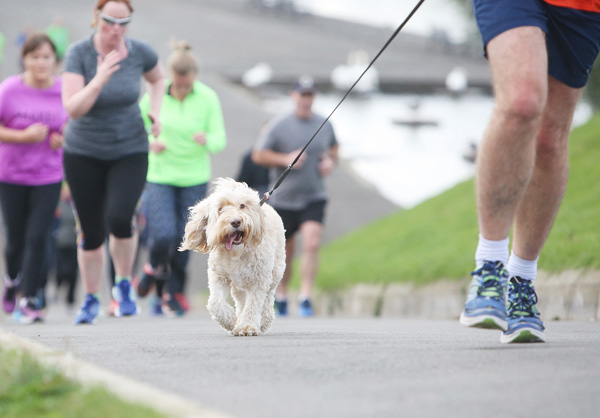 Matt Higgins on the Waterworks ParkRun with his dog Gwenn