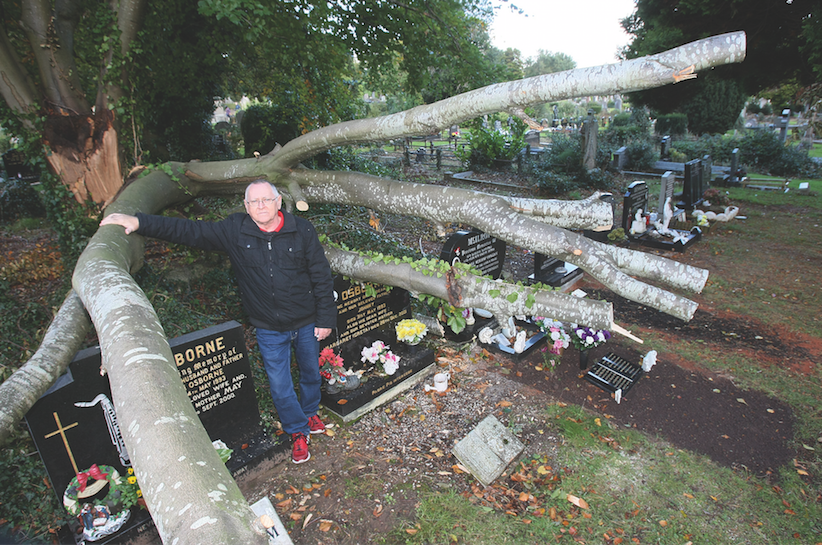 SHOCK: Gerry Osborne visits his parents' grave in the City Cemetery where a tree lies on top of their  headstone
