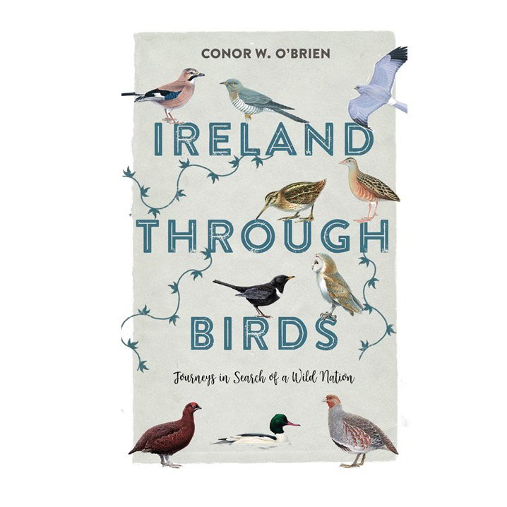 Conor O'Brien's new book
